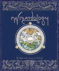 Wizardology_2